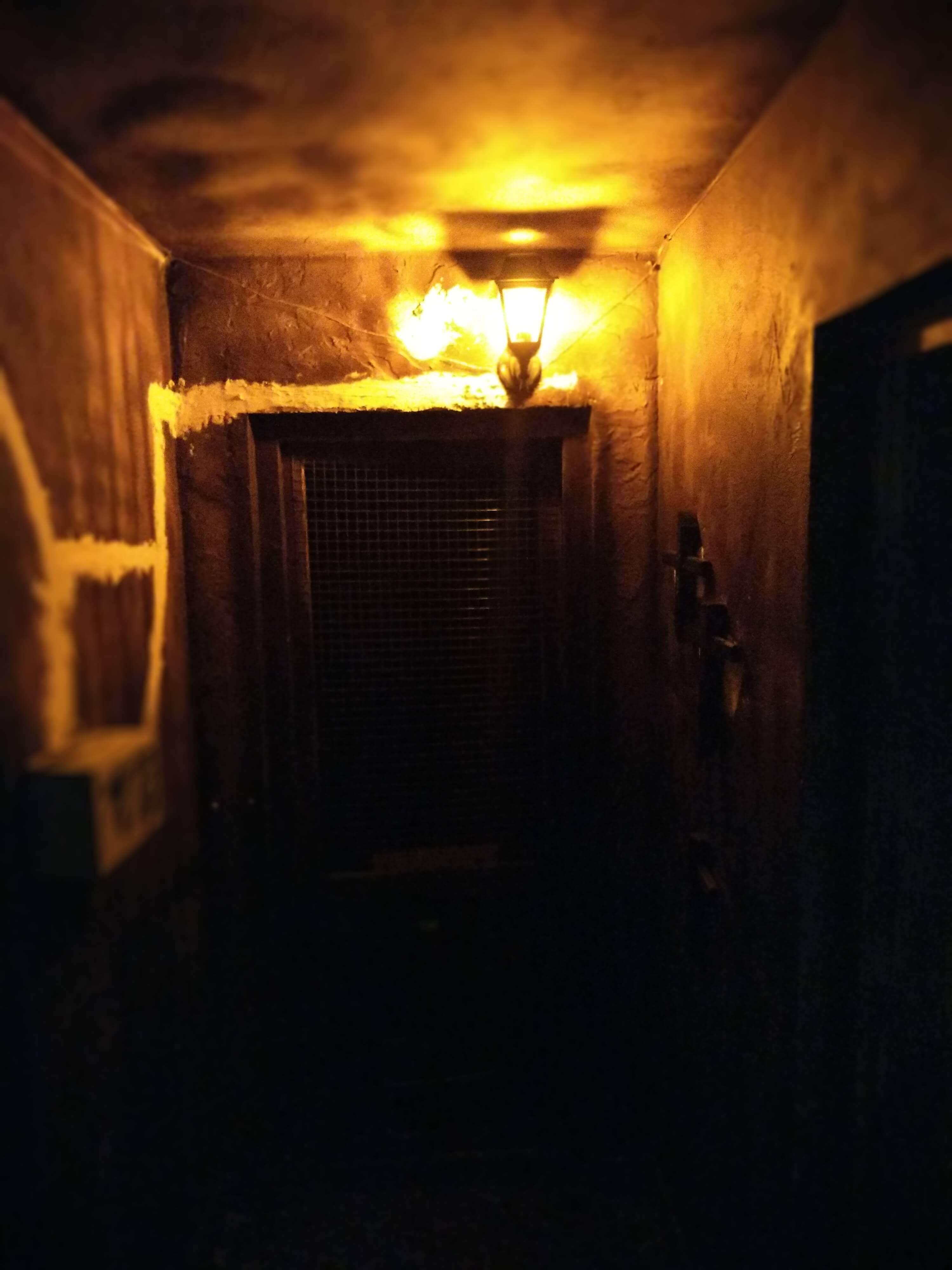 3 Фото квест комнаты Голодный Дом в городе Одесса